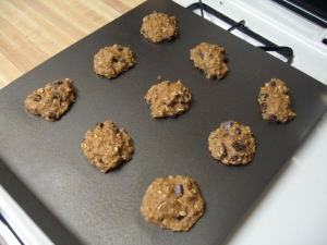 Mini Batch of Healthy Chocolate Chip Cookies
